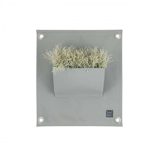 Pflanztasche Wand Grau