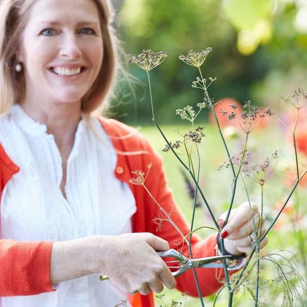 Präzisions-Gartenschere