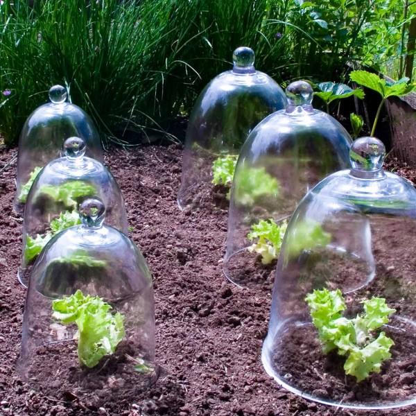 Pflanzglocken »Garden«