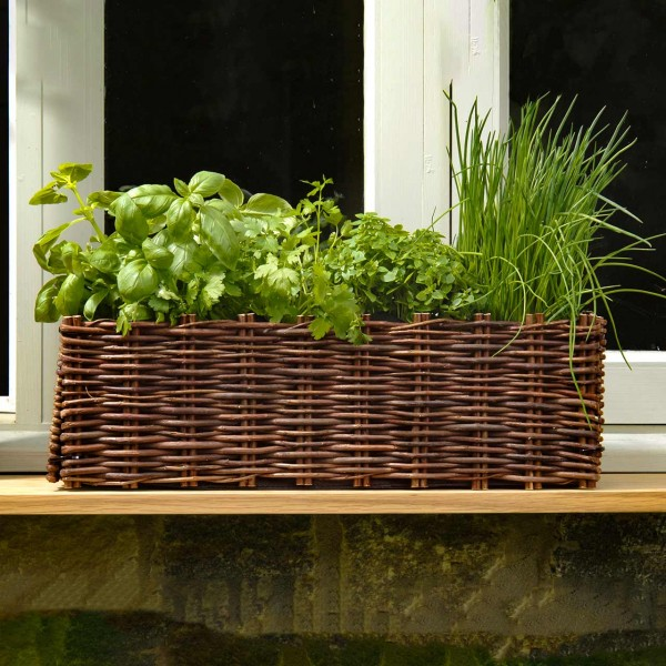 Pflanzset »Window Box«