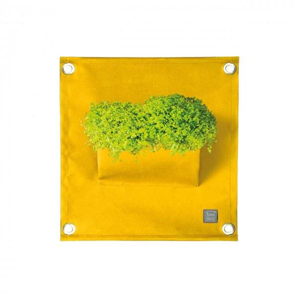 Pflanztasche Wand - gelb