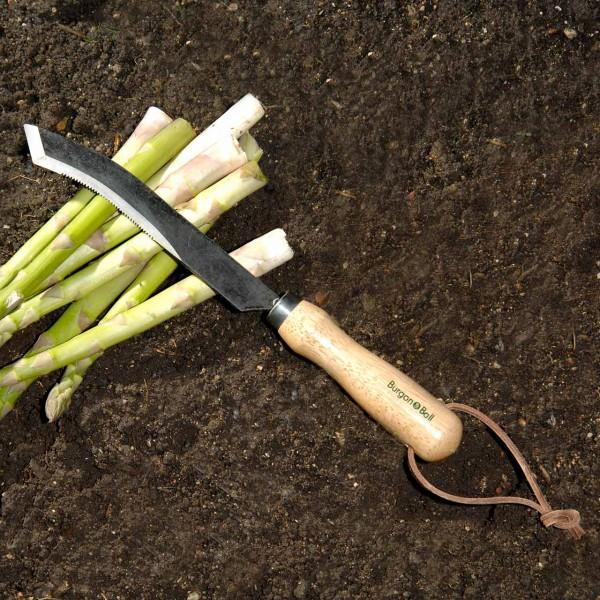Spargelernte-Messer