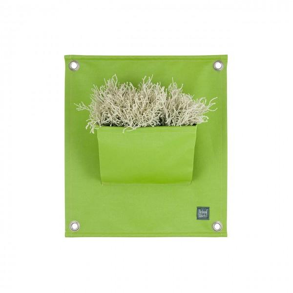 Pflanztaschen Wand - grün