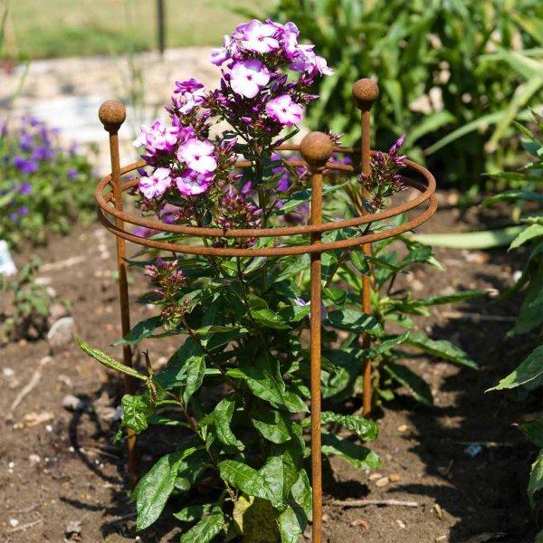 Pflanzenstütze »Short Plant Support«