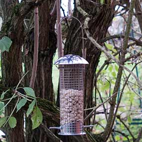 Vogelfuttersäulen und Vogelfutterspender