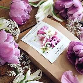 Tulpen- und Narzissenkollektionen