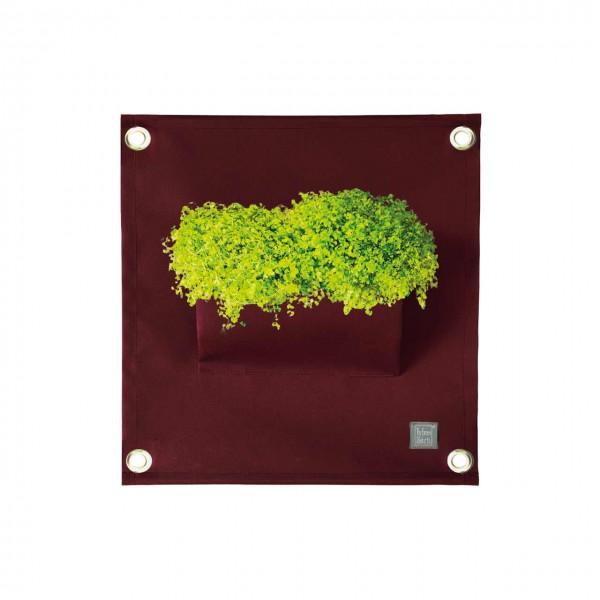 Pflanztasche Wand