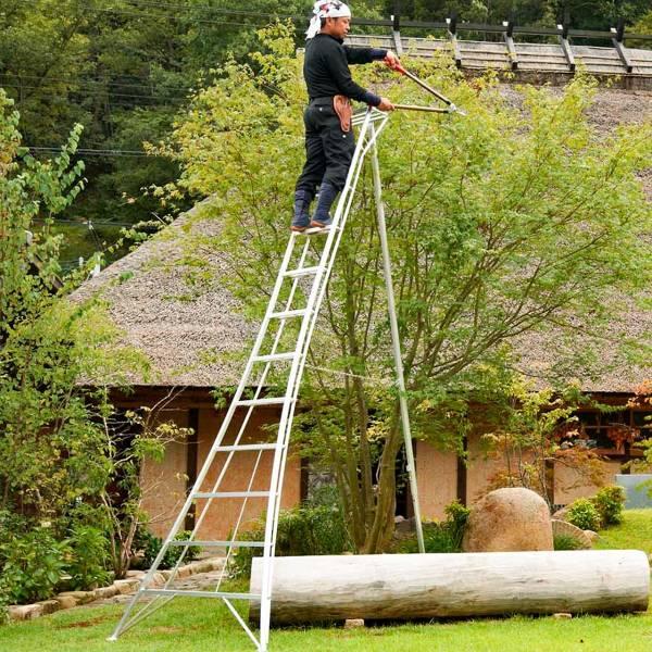 Gartenleiter 'Hasegawa' 3,60 m