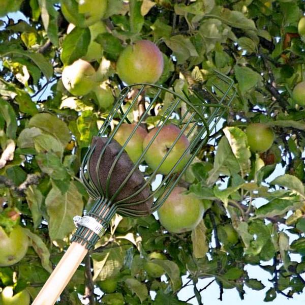 Obstpflücker »Apple Picker«