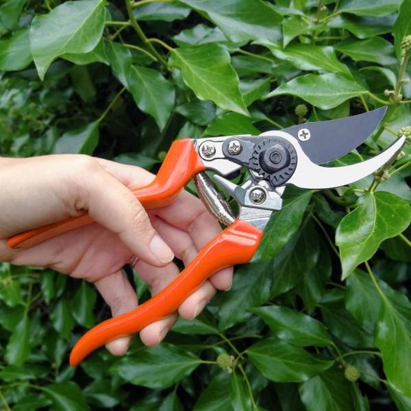 Gartenschere Linkshänder