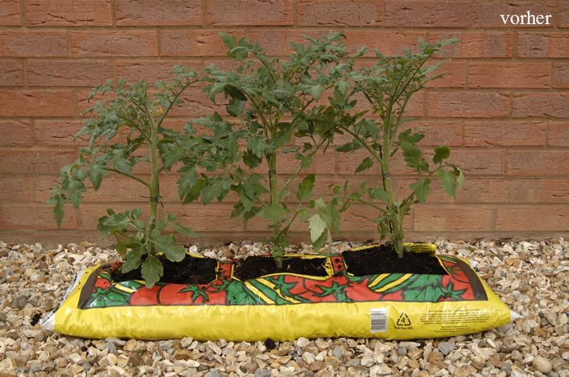 weideneinfassung f r pflanzs cke the garden shop. Black Bedroom Furniture Sets. Home Design Ideas