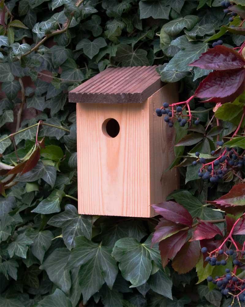 nistk sten seite 5 the garden shop. Black Bedroom Furniture Sets. Home Design Ideas