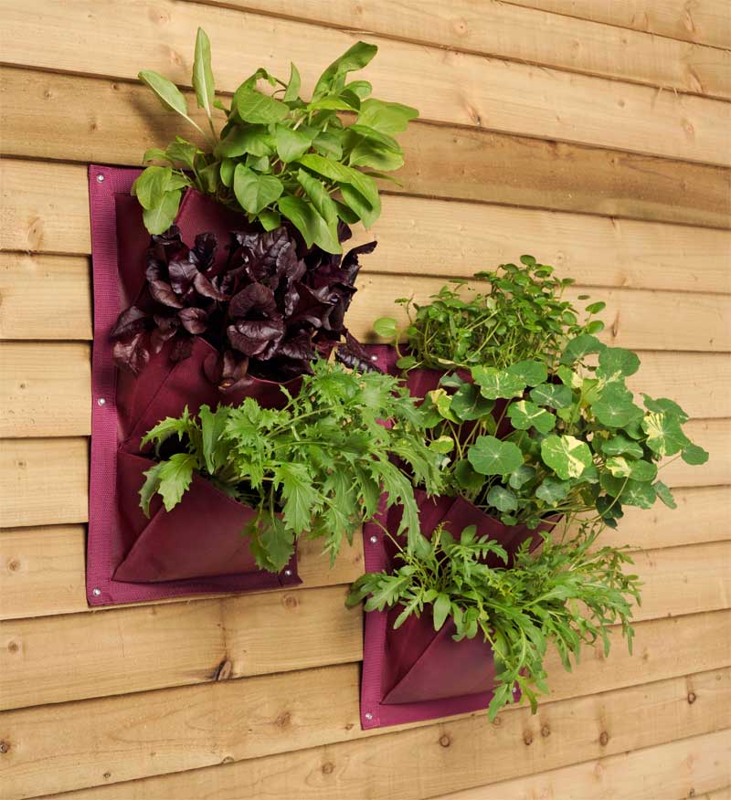 pflanztasche f r die wand aubergine 2er pack the garden shop. Black Bedroom Furniture Sets. Home Design Ideas