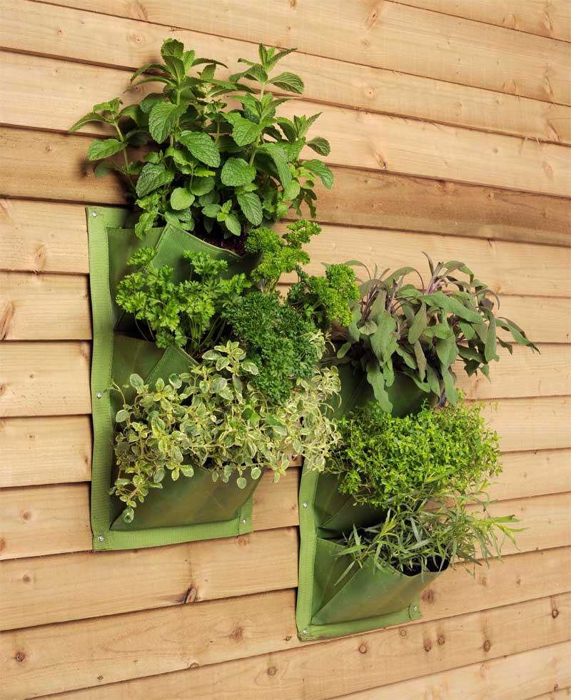 pflanztaschen f r die wand the garden shop. Black Bedroom Furniture Sets. Home Design Ideas