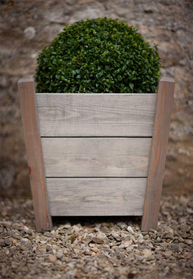 pflanzk bel kingham the garden shop. Black Bedroom Furniture Sets. Home Design Ideas