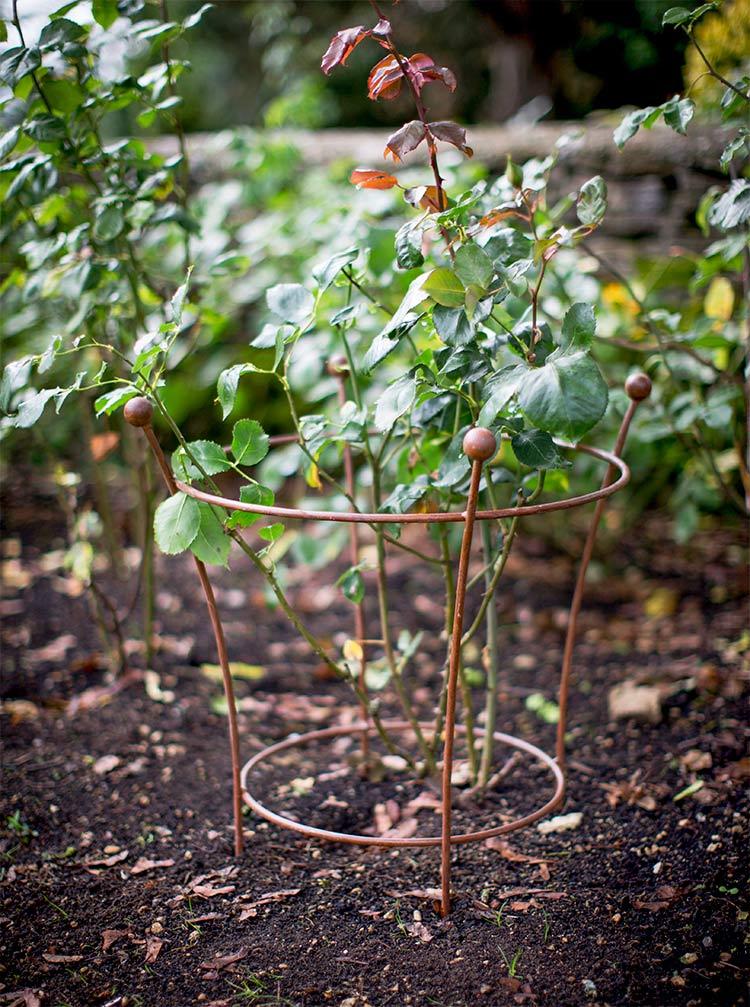 pflanzenst tze seite 2 the garden shop. Black Bedroom Furniture Sets. Home Design Ideas