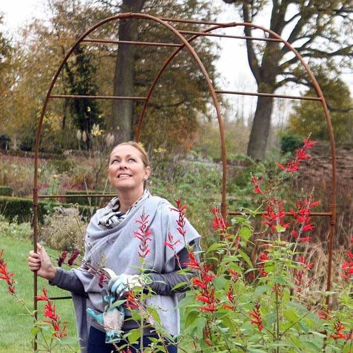 Rosenbogen rost the garden shop for Rost metall