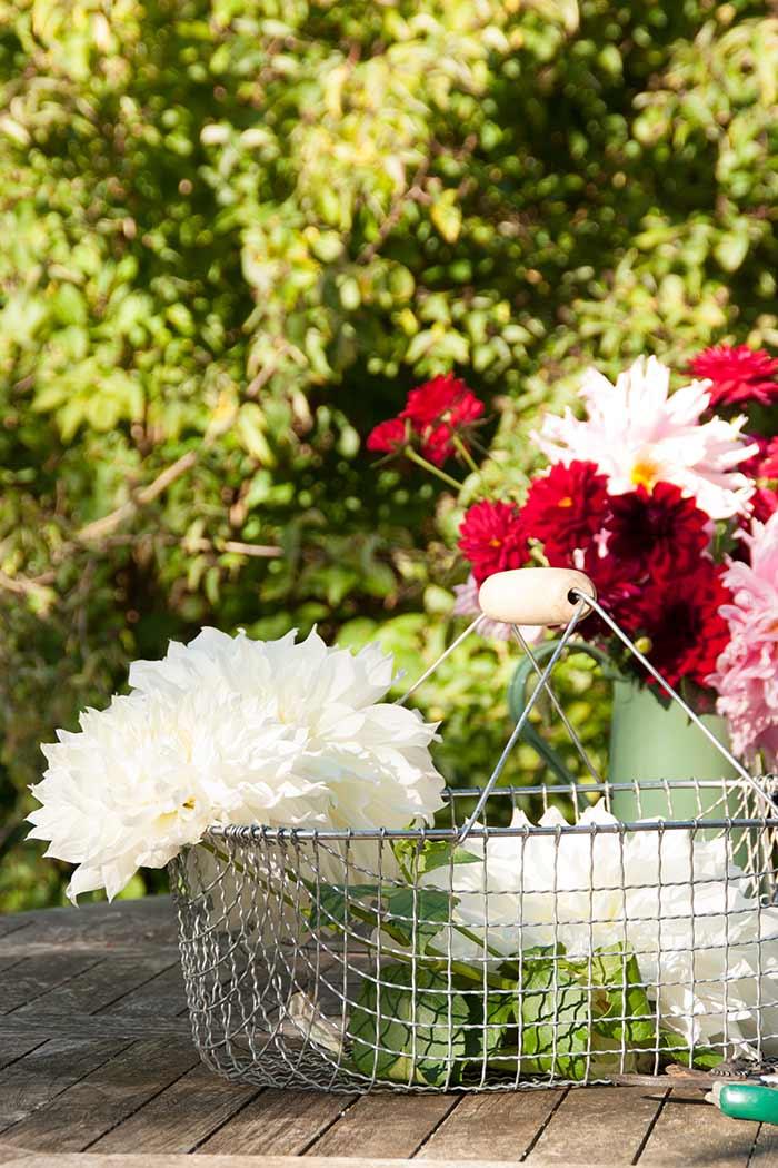 Erntekorb aus Draht – The Garden Shop