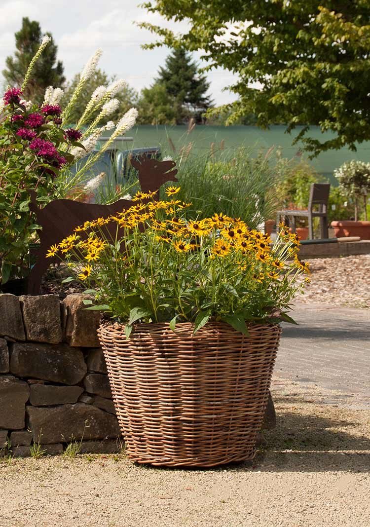 rattan pflanzk bel the garden shop. Black Bedroom Furniture Sets. Home Design Ideas