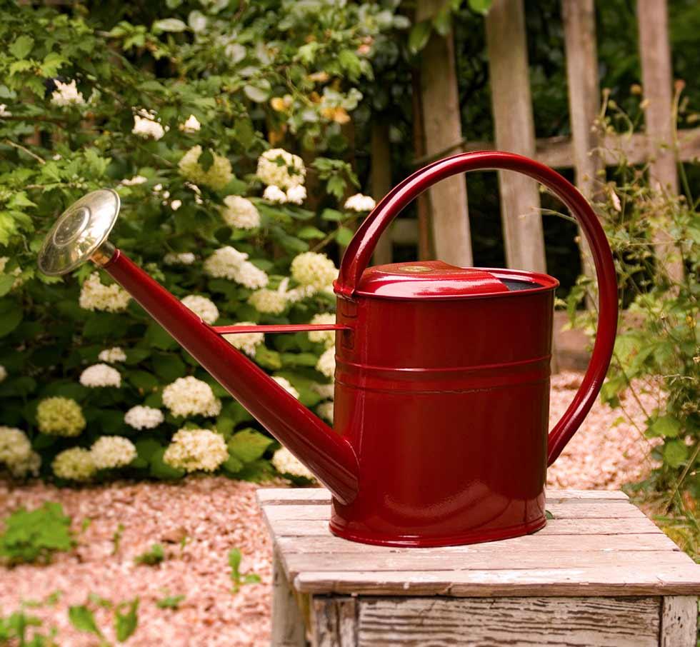 gie kanne haws slimcan 8 liter the garden shop. Black Bedroom Furniture Sets. Home Design Ideas